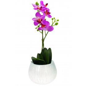 Pot phaléno céramique D. 13 x H. 13 cm