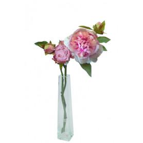 Pivoine courte 2 fleurs et 1 bouton