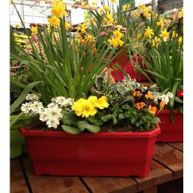 Jardiniere Millesia L. 40 x l. 17,5 x H. 15 cm