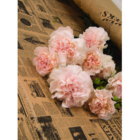 Papier kraft vergé fantaisie fleurs et musique