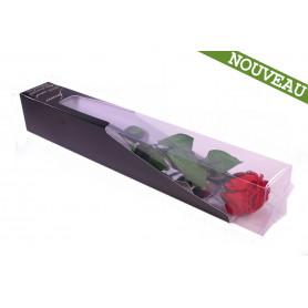 Rose éternelle stabilisées sur tige