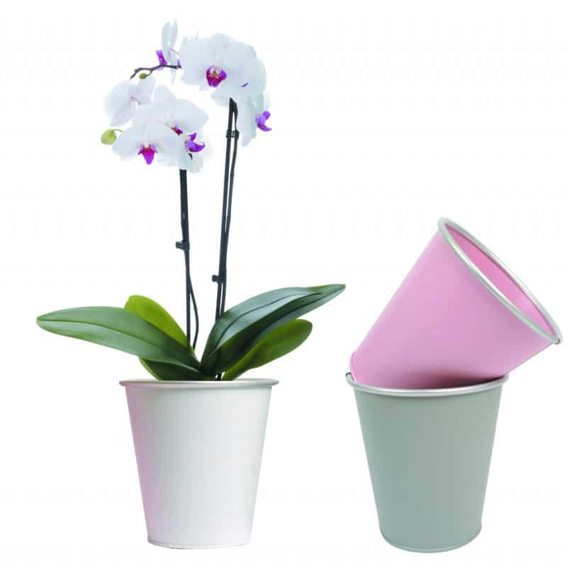 Pot de fleurs rond en métal spécial phalaeno Mysticbar