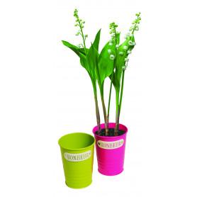Pot de fleurs rond en zinc Bonheur Muguet
