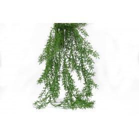 Chute Asparagus 93 cm