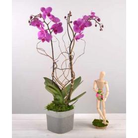 Pot de fleurs carré en céramique bicolore Nacre - matériel fleuriste