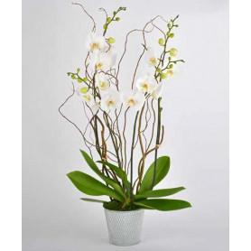 Pot de fleurs rond en zinc texturé Bianca - materiel fleuriste