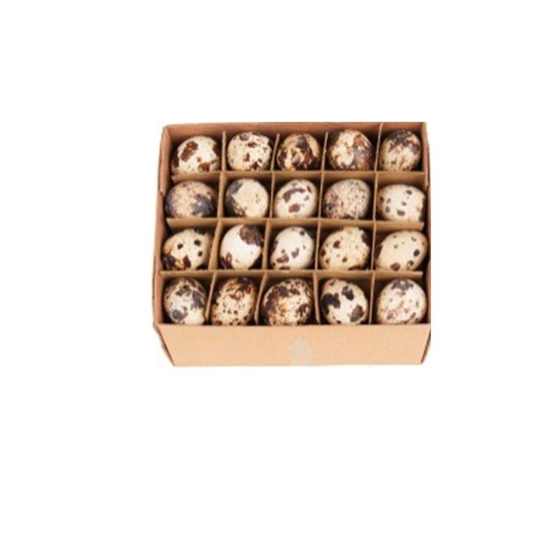 Boîte de 60 oeufs de caille Kailla - Grossiste fleuriste