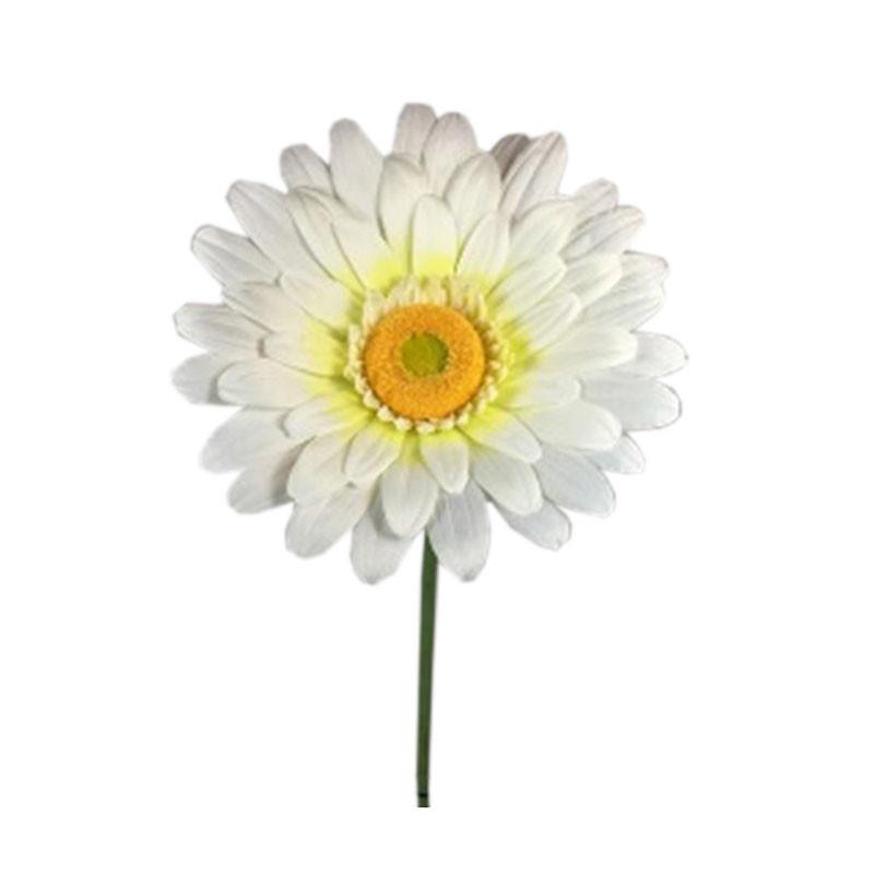 Marguerite géante Emmie - Grossiste décoration