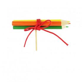 Pics crayons Ekole - Matériel fleuriste