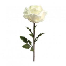 Rose géante Aliénor - Matériel fleuriste