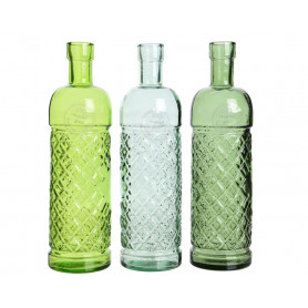 Soliflors bouteilles assortis Meneva - Matériel fleuriste