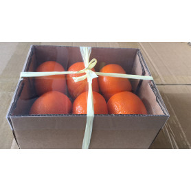 Mandarine artificielle décorative Mandy - Grossiste fleuriste