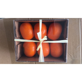 Mandarine artificielle décorative Mandy - Grossiste déco
