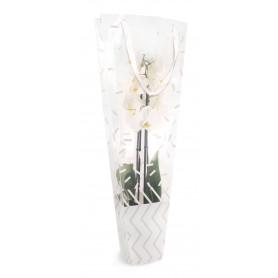 Sacs à orchidées Eterna - Grossiste emballage