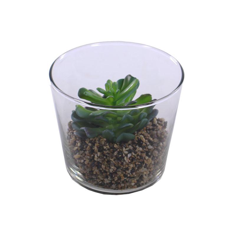 Pot et succulente Kakté - Grossiste déco