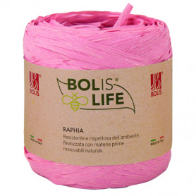 Raphia coloré Bolyte - Grossiste fleuriste