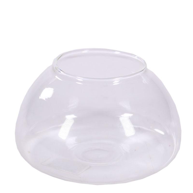 Coupe verre terrarium Belbar - Grossiste fleuriste