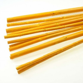 Sac de 10 Canna stiel - Bambou