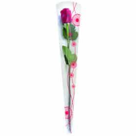 Etui à rose Aero D. 13,5 x...