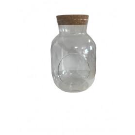 Terrarium bouteille...