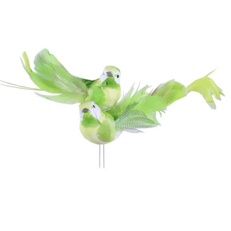 Oiseaux verts sur pic Chilos - Matériel fleuriste