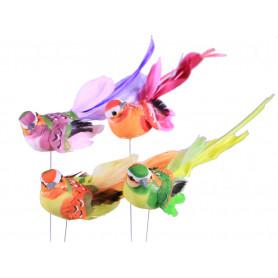 Oiseaux multicolores sur...