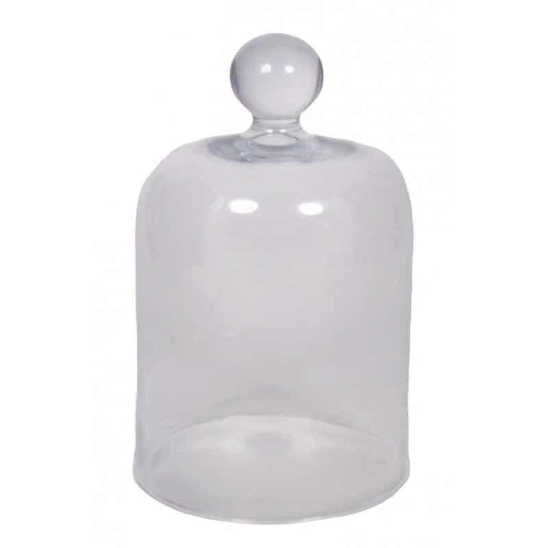 Cloche en verre Trave