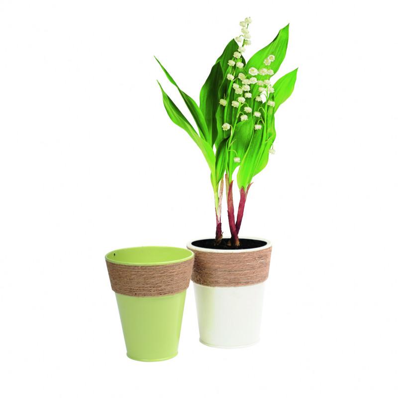 Pots ronds en métal assortis State - Grossiste fleuriste