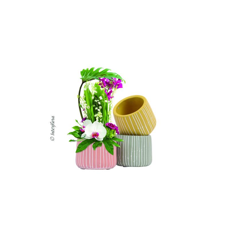 Pots ronds assortis en ciment Noussa - Grossiste pour fleuriste