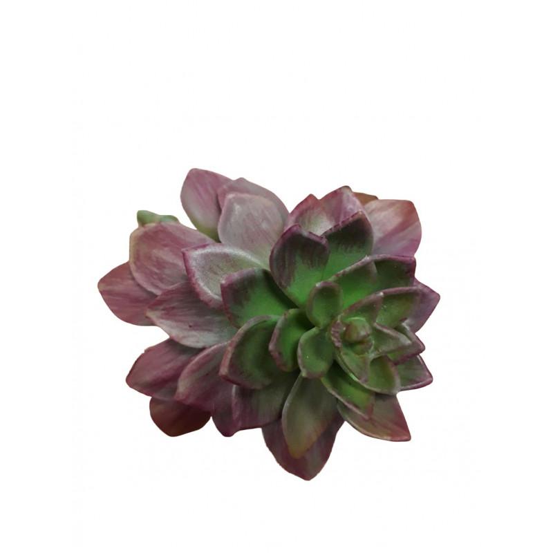 Succulente echeveria artificielle Vilko - Grossiste pour fleuriste