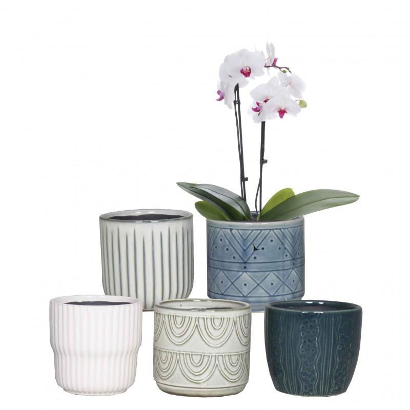 Pot céramique orchidée diamètre 13cm - grossiste déco