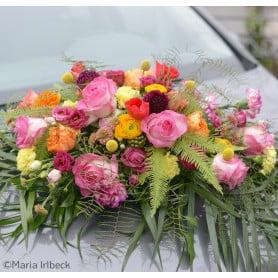 Ventouse Oasis Auto-corso mousse florale - grossiste fleuriste