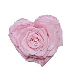 Tête de rose éternelle cœur