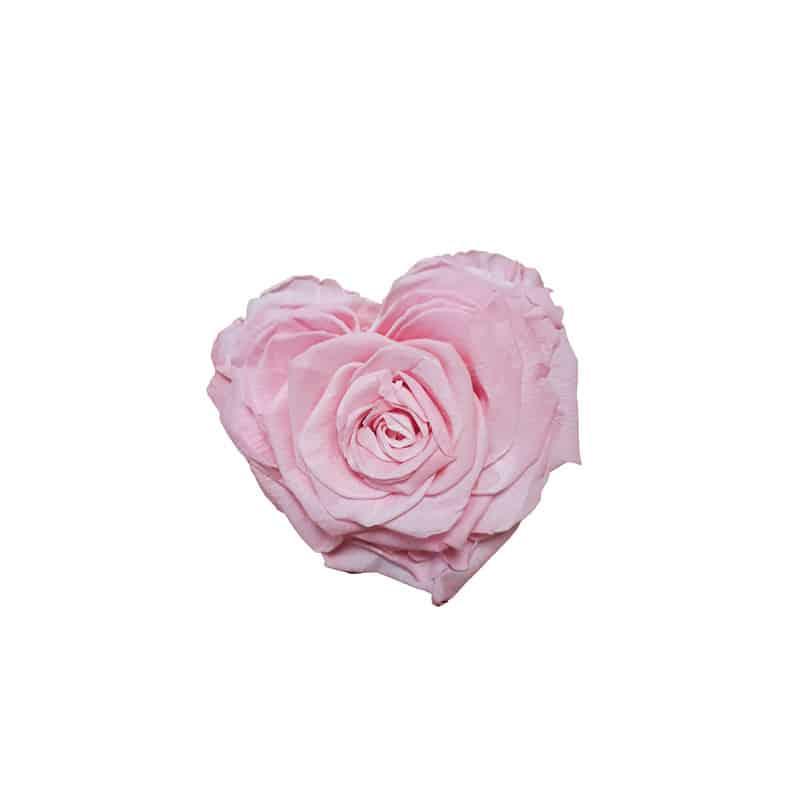 Tête de rose éternelle cœur - Grossiste fleuriste