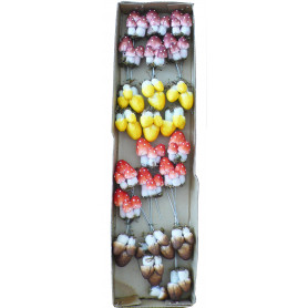 24 mini champignons sur pic...