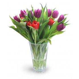 Vase en plastique Fizzy  - Grossiste fleuriste emballage pot de fleurs