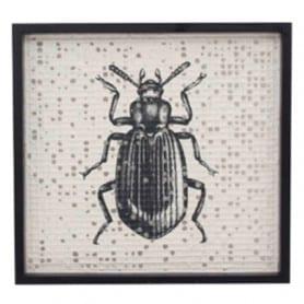 Cadre motif insecte Seraf