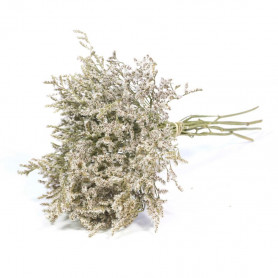 statice tatarica séché - Grossiste décoration florale