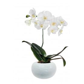 Vase boule orchidée céramique