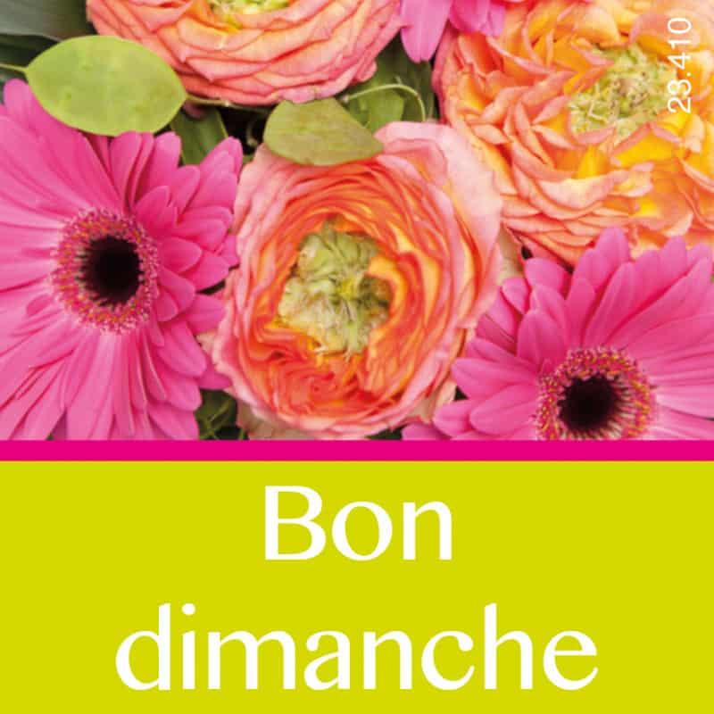 Étiquettes adhésives Bon dimanche Lamia - Matériel pour fleuriste déco