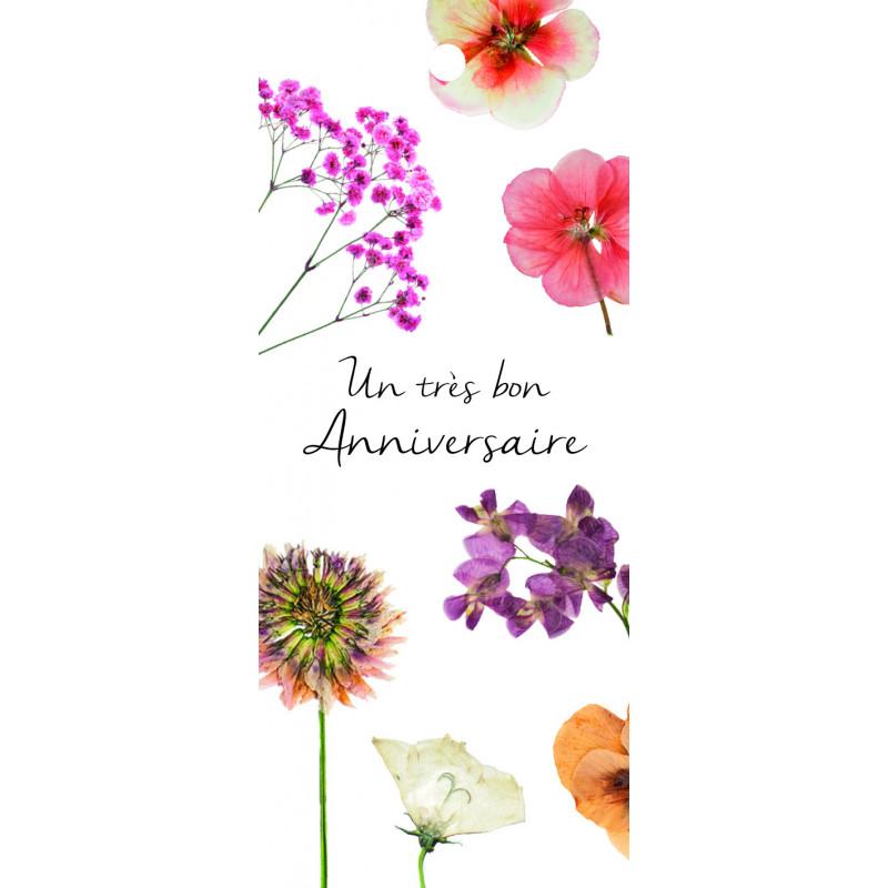12 cartes de circonstance Un très bon anniversaire Maé - Grossiste pro