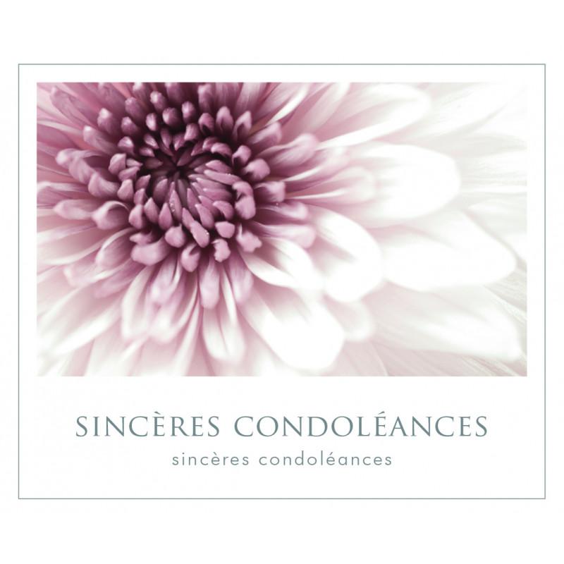12 Cartes De Circonstance Sinceres Condoleances Mafy Grossiste Deco