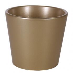 Pot Phalaeno basic Noel