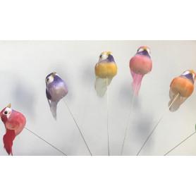24 oiseaux à piquer Punika