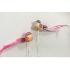 12 oiseaux à piquer Tuida