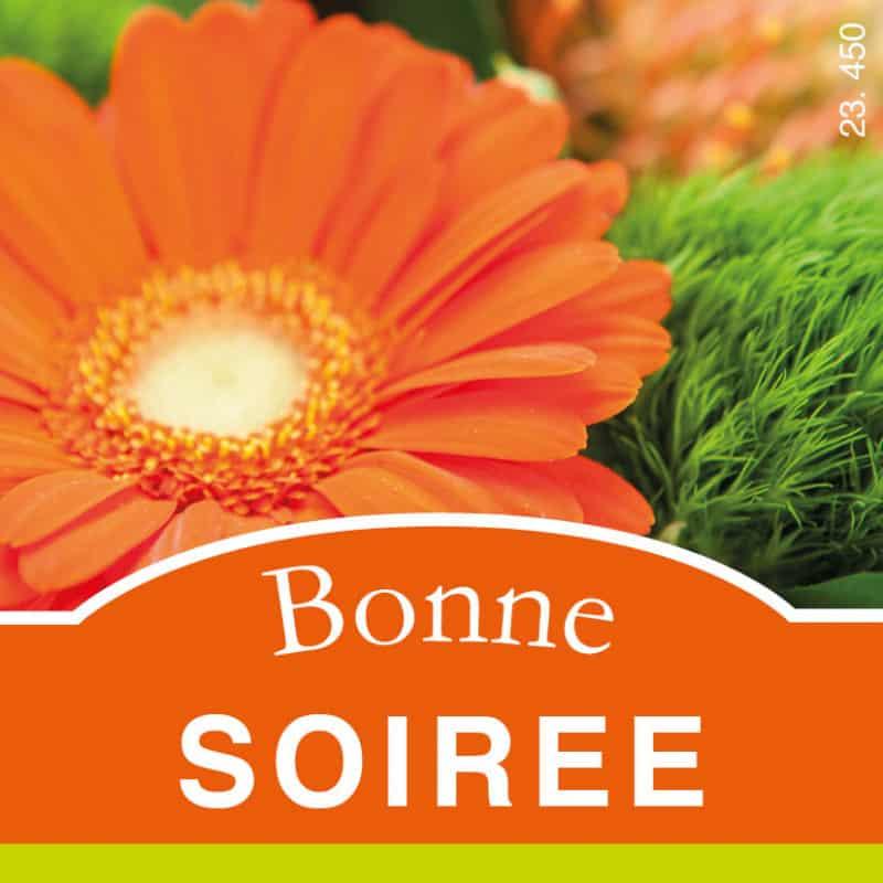 Étiquettes adhésives Bonne soirée - Matériel pour fleuriste accessoires