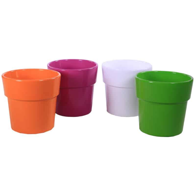 Pot Phalaeno multicoloris - contenant fleuriste