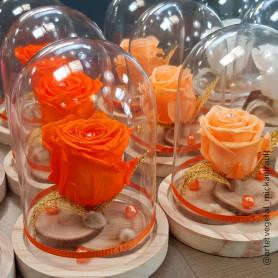 Cloche en verre sur son socle en bois Dôminae - materiel fleuriste