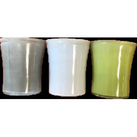Pot Phalaeno multicoloris...