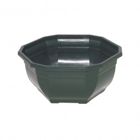 Coupe plastique verte Ocea...
